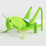 LittleGrassHopper